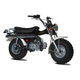 Moto T-REX 125 - SKYTEAM