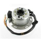 Stator d'allumage + rotor 150 Lifan