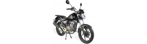 Moto 50cc, 125cc homologuées